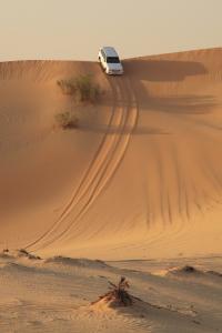 Abu Dhabi V&T